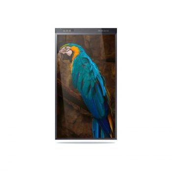 "Monitor bifacciale 55"" Samsung OMN-D 3000 nit"